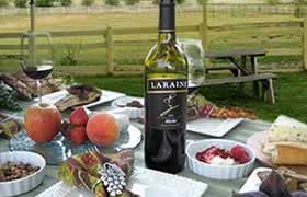 outside table with wine and spread