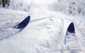 skier on ski run