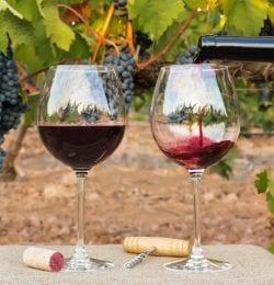 twisted-oak-winery
