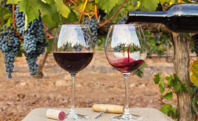Twisted Oak Winery wine glasses