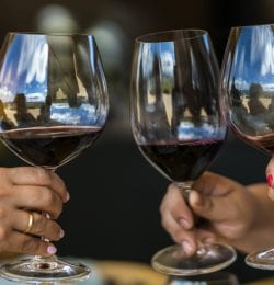 Casablanca is an area at the middle of Chile very famous because of its wineries and vineyards. Expending some time is an amazing way of knowing one of the biggest industries after mining: Wine