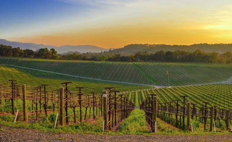 Sunset view from the eastern hills of Coombsville, in Napa County, CA